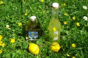 Zitronige Köstlichkeiten Limonolio und Limoncello auf blühender Wiese. Mehr dazu auf www.oliopiceno.de